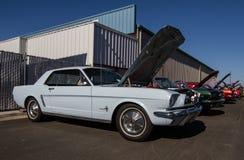 Mustangs Plus stockton ca Car Show 2014 Royalty Free Stock Photos
