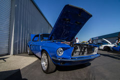 Mustangs Plus stockton ca Car Show 2014 Royalty Free Stock Photos