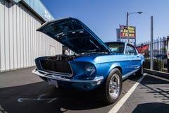 Mustangs Plus stockton ca Car Show 2014 royalty free stock image