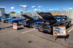 Mustangs Plus stockton ca Car Show 2014 Royalty Free Stock Photo