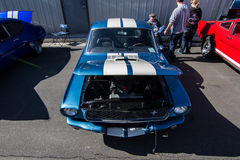 Mustangs Plus stockton ca Car Show 2014 Stock Photos