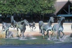 Mustangs van Los Colinas, Werelden grootste Ruiterbeeldhouwwerk, Los Colinas, TX Royalty-vrije Stock Foto's