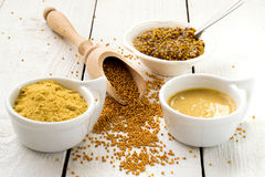 Mustard in the assortment Stock Photography