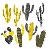 Mustard and Charcoal Cactus and Succulent Plants Royalty Free Stock Images