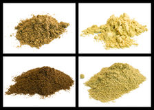 Mustard, coriander, fennel, celery Royalty Free Stock Images