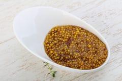 Mustard dijon Royalty Free Stock Image