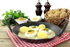 Mustard eggs Stock Image
