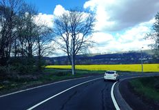 On the road. Mustard field on the way to Liege , Belgium Stock Photo
