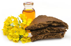 Mustard flowers, oil and cake Stock Photo