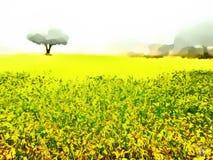 Scenery of Field of MustardSarson vector illustration