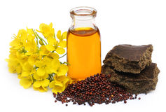Mustard oil cake with flower Royalty Free Stock Photography