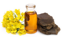 Mustard oil cake with flower Stock Photography