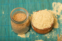 Mustard powder and seeds Stock Image
