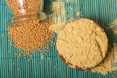 Mustard powder and seeds Royalty Free Stock Photo