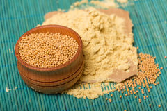 Mustard powder and seeds Stock Image