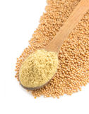 Mustard powder in spoon Stock Images