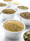 Mustard Seed Stock Photos