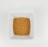 Mustard seed Stock Photos