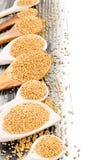 Mustard seed Royalty Free Stock Image