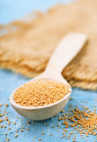Mustard seed Royalty Free Stock Photography