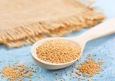 Mustard seed Royalty Free Stock Photos