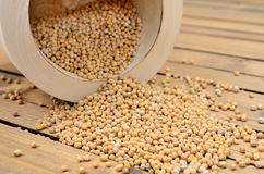 Mustard seed on table Stock Image