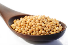 Mustard seed in wooden spoon Royalty Free Stock Images