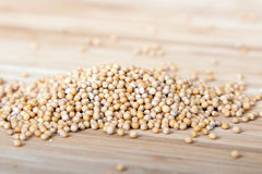 Mustard seed Royalty Free Stock Images
