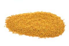 Mustard Seed Yellow Royalty Free Stock Photos