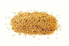 Mustard seeds Royalty Free Stock Photos