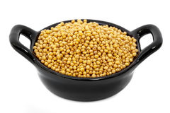 Mustard Seeds Royalty Free Stock Photography