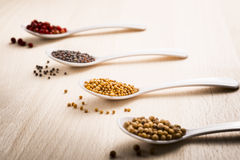 Mustard seeds. Food spices with focus on mustard seeds stock photography