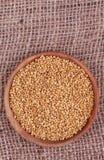 Mustard seeds Royalty Free Stock Image
