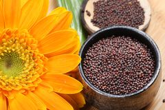 Mustard seeds. Beautiful shot of mustard seeds in bowl stock photo