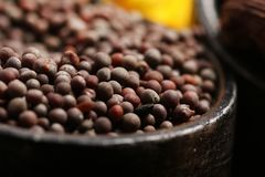 Mustard seeds Stock Images