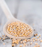 Mustard Seeds on a cooking Spoon Royalty Free Stock Image