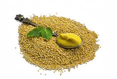 Mustard seeds heap with mustard sauce in a spoon isolated Stock Images
