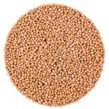 Mustard Seeds Isolated on White Stock Photo