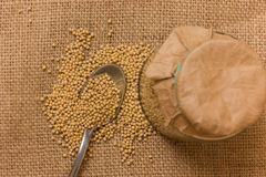 Mustard Seeds in a jar Stock Photography