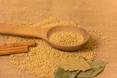 Mustard Seeds in a jar Royalty Free Stock Image