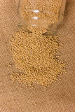Mustard Seeds in a jar Royalty Free Stock Photo