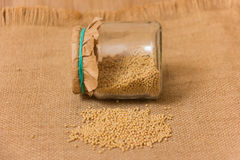Mustard Seeds in a jar Royalty Free Stock Photos