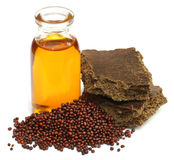 Mustard seeds oil and cake Stock Photo