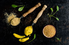 Mustard. Seeds, powder and ready  spice on a dark background royalty free stock photos