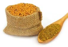 Mustard seeds Royalty Free Stock Photo