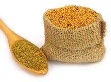 Mustard seeds Stock Image