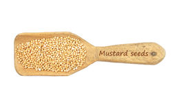 Mustard seeds on shovel Royalty Free Stock Photos