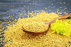 Mustard seeds in spoon with flower on black board Stock Images