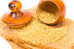 Mustard Seeds Royalty Free Stock Photo