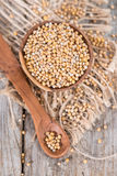 Mustard Seeds (on wooden background) Stock Photo